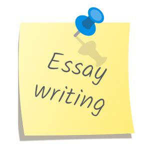 Want business major essay
